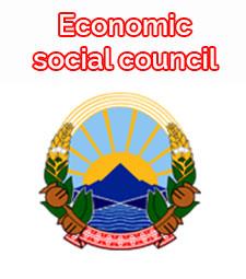 Economic social council